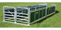 Prattley Sheep Handling Race