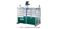 C11200 - Calf Weigh Crate (no drafting)